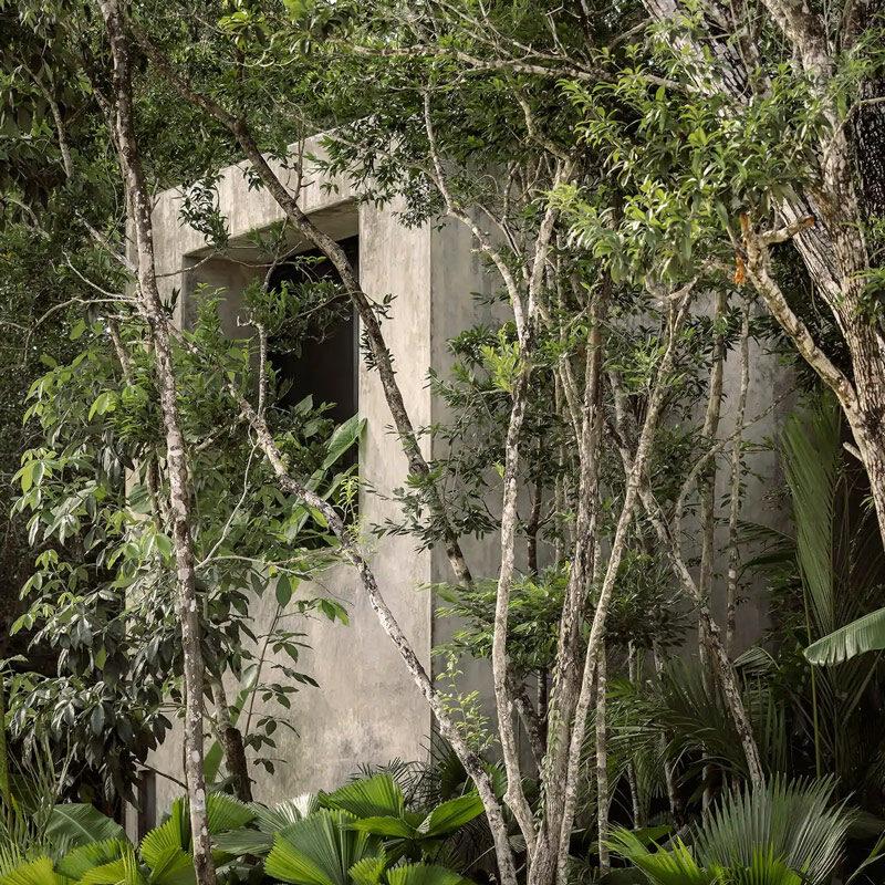 casa aviv house tulum mexico co-lab design office